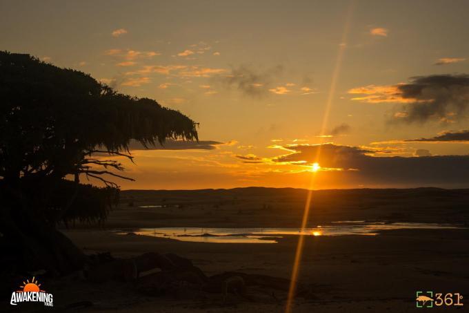 Nascer do sol junto a Figueira salvadora
